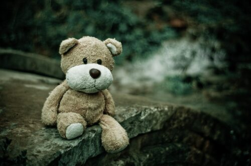 Sad teddy bear lost in the woods